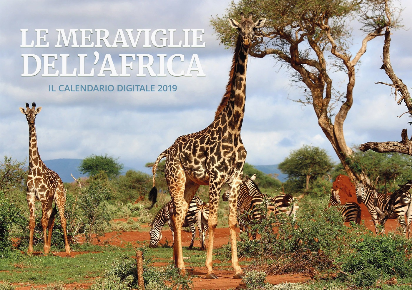 FdS - Le meraviglie dell'africa 2019